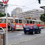 О снова-прогулке по Праге в любимой Стромовке